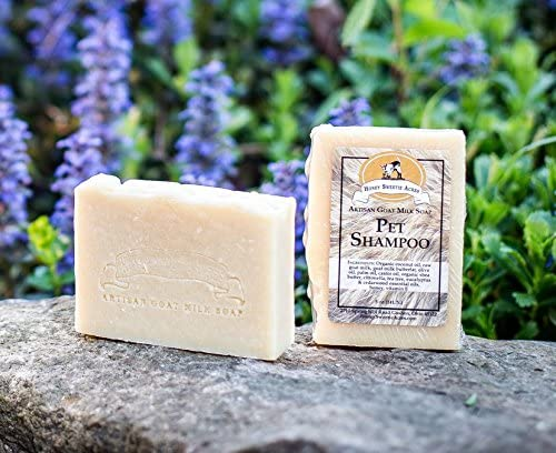 The Cheese Shark - Goat milk soap for dogs