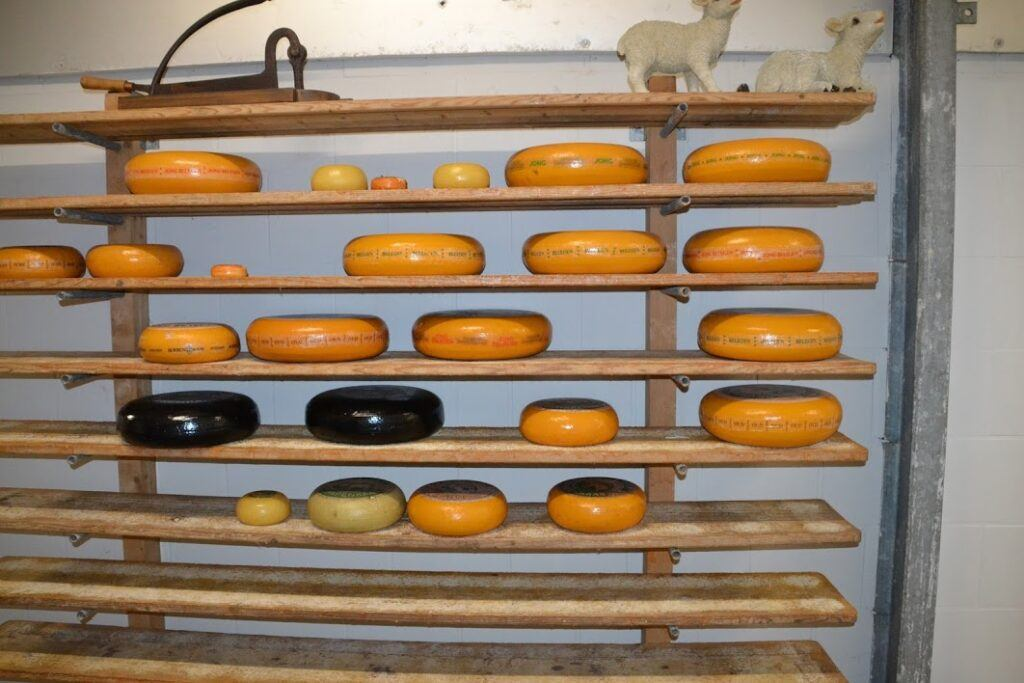 How to Store and Age Cheese - The Cheese Shark